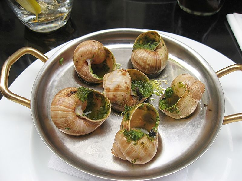 Classic French dish - Snails