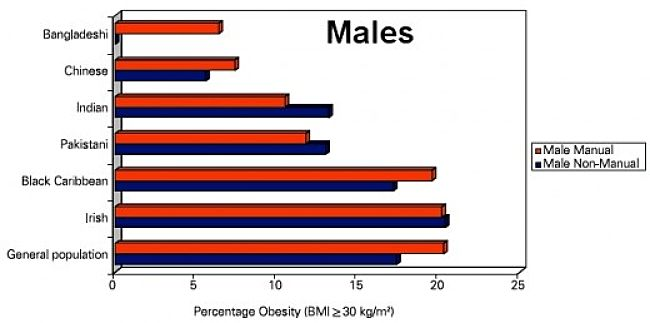 Percentage of Obese Males