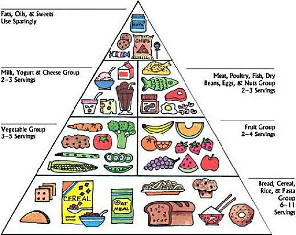 One of the many forms of the Food Plate Guide for healthy eating