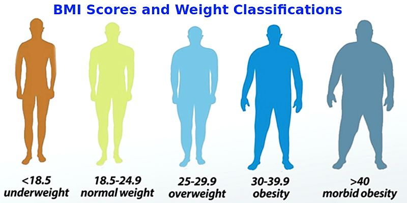 BMI scores and weight classifications