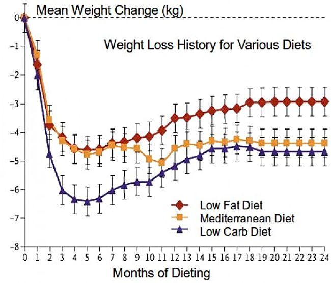 Most people who initially lose weight on a diet - put most, or all of the weight lost back on again