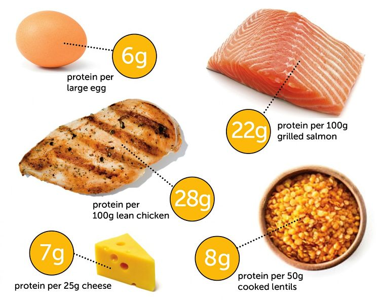 Protein levels in various high protein foods