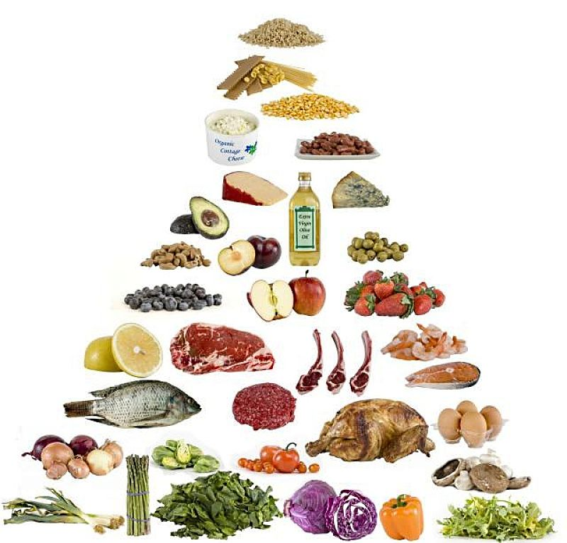 Source Public Domain The High Protein Low Cal Food Pyramid