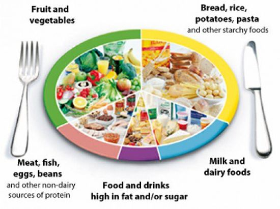 The Healthy Food Plate - make wise choices for every meal