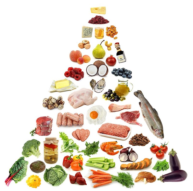 The Paleo Food Pyramid - Natural foods and protein