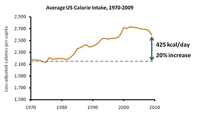 How average calorie intakes have changed from 1970 - 2010. The start coincided with major changes in food processing in the 1970's