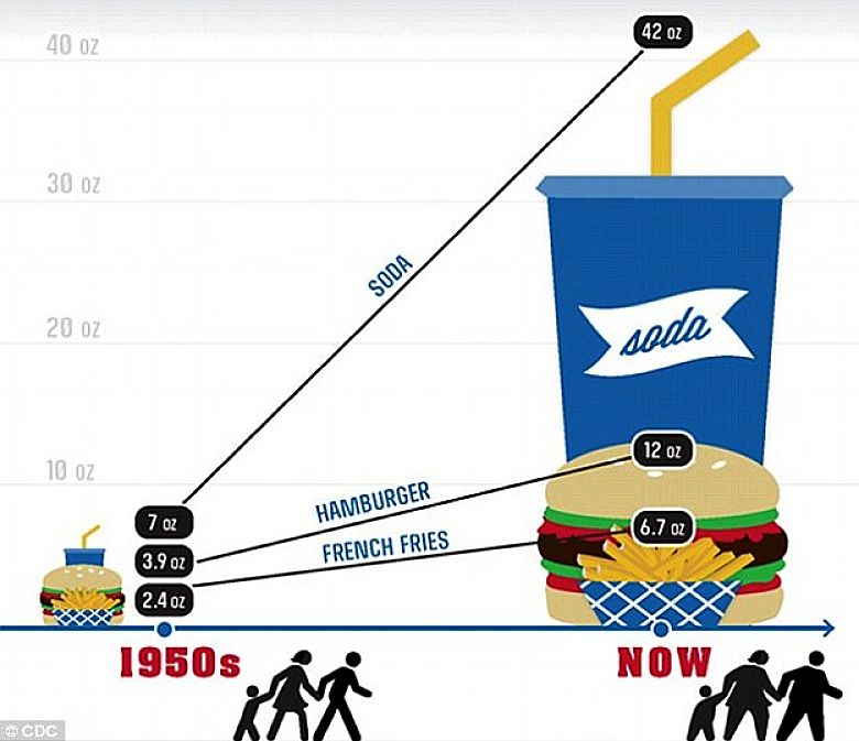 Graph of changes in portion sizes since the 1950's
