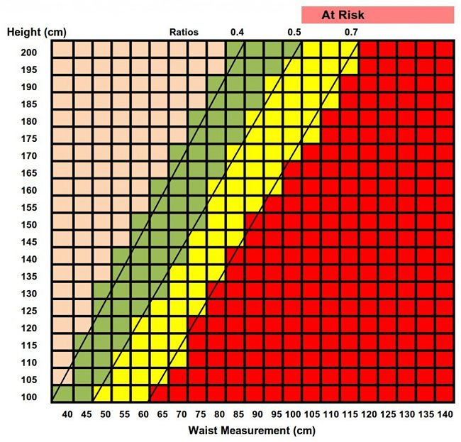 Ideal Waist Size Half Your Height Beats Bmi As Weight Risk Guide