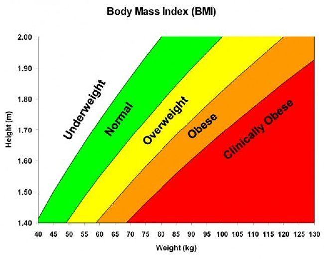 Ideal Waist Size Half Your Height Beats Bmi As Weight Risk Guide
