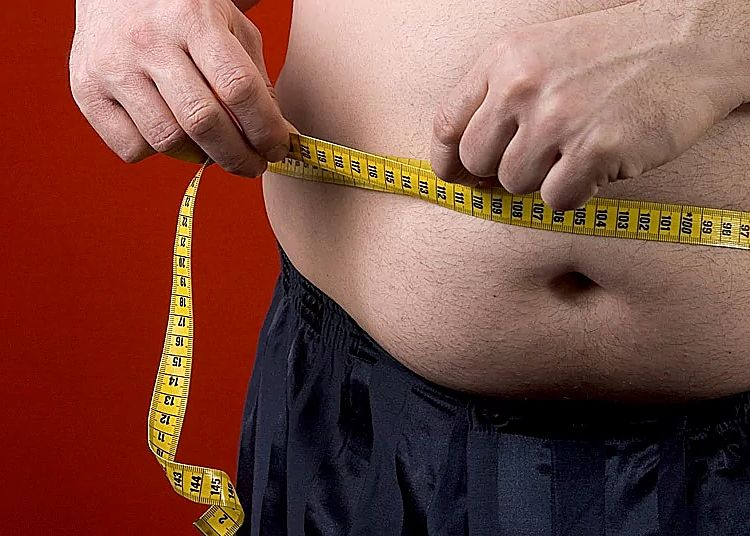 Checking that waist circumference is no more than half of height is the best way of monitoring body mass, say experts. It is better than BMI index